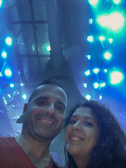 Acquario e zoo sottomarino Dubai